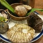海鮮茶屋貝族料理みのしょう -