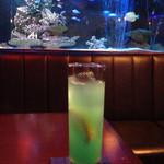 BLUE FISH AQUARIUM - シーサイドロマンス
