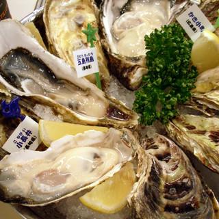 新鮮な牡蠣を食べ比べてみてください♪国内外産牡蠣を豊富にご用意!