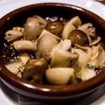 カサ デ マノーロ - アヒージョ好きがお代わりするのはコチラが多い「マッシュルームのアヒージョ」