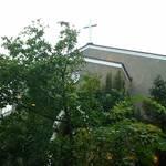 カカオサンパカ カフェ - 中庭には協会が見えました。
