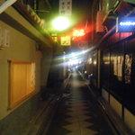 4267747 - 夜の先斗町通。その1。