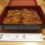 山尾 - 料理写真:2015/9  鰻の蒲焼