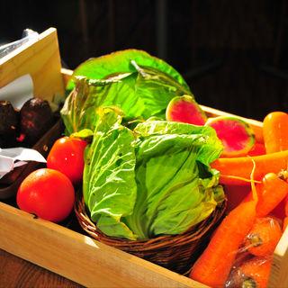 富士山麓の有機野菜のサラダ