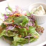 ワインビストロ ピコレ - パスタランチ 980円 のサラダ