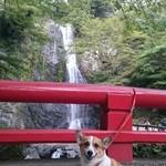 42849569 - 箕面の滝とモナby arumona