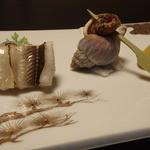 料亭 恵の本 - 羽田の穴子の白焼きが入った前菜。穴子の模様はまさしく秤目ですね