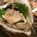雫 - 岩牡蠣