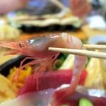 玄海寿司 本店 - 甘海老いただきま~す♪