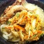 はなまるうどん - かけうどん(大)+天ぷら