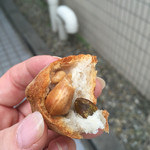 42883605 - サンクナッツの中にはナッツがゴロン。