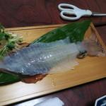 旅館 出雲 - 料理写真:透き通った身のイカ刺し