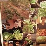 シナブロ - 自家農園で野菜栽培