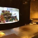 42933811 - 水槽にはトロピカルな海水魚が元気に泳いでいます、ニモ(クマノミ)が可愛い!