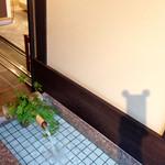 42956169 - 井戸水に浮かぶ影カエル(笑)