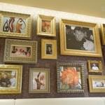 オクシタニアル - カフェスペースの壁には写真が沢山並んでます