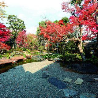 四季折々の八ッ橋の庭は癒しの空間