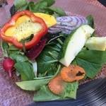 43251860 - 新鮮野菜サラダ