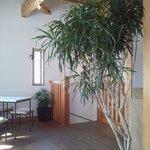 Kissa&Dining 山ノ舎 - オシャレな2Fスペース。差し込む日差しが心地よい。