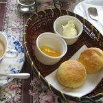 紅茶専門店ハーヴェスト - スコーン