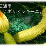 天現寺ガーデン - ズッキーニ 三浦野菜