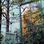 キル フェ ボン - 木と窓