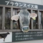 いでぼく ミルクハウス -