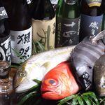 わさび - 単品 (2)魚