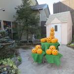 松月堂 - 店横にあったかぼちゃ