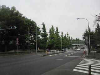 コマザワ パーク カフェ - 前は駒沢通り