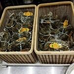 中国菜 一燈火 - 今日から上海蟹解禁です