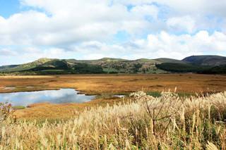 ヒュッテみさやま - 八島ヶ原湿原。ヒュッテみさやまの近く