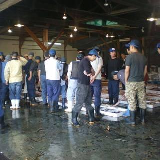 長浜、姪浜市場から直送のこだわりの鮮魚