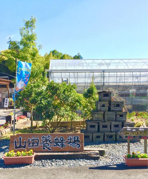 山田養蜂場 みつばち農園