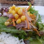 クッチーナ・ディ・トリヨン - たっぷり野菜サラダ