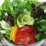 健康食工房 たかの - 旬の自家栽培の生野菜も楽しい