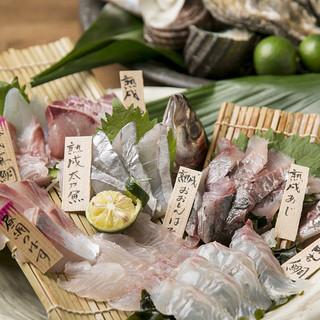 【新鮮魚介】明石昼網の鮮魚!!