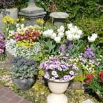花遊庭 - 庭園3