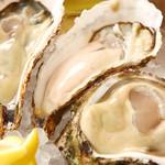 ビストロ カキヤ - 日本各地の新鮮な生牡蠣を入荷しています!