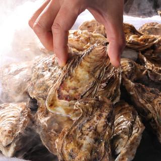 年中食べれる新鮮な牡蠣の秘密!