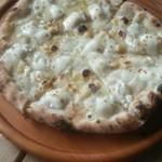 43855619 - 7種のチーズピザ