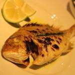 イノウエ グリリア - 真鯛のグリル 2400円くらい ハーブソースがすこしかかっています