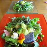 トラットリア プルチーノ - 料理写真: