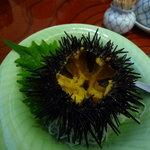 幸寿司 - 料理写真:お通しがうに!