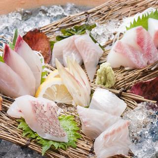 長崎県直送五島灘天然魚