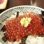 4426922 - いくら丼 \1250  盛りだくさん! 残りの御飯は刺身と一緒に食べました。