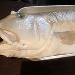 う越貞 - 2015年11月 白甘鯛 4.5kg 愛媛県八幡浜