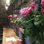 青山フラワーマーケット ティーハウス - カウンター席に並ぶ、バラ♪