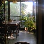 レストラン アーサー - 店内テラス側には観葉植物に暖かな日差し