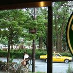 4442244 - どこからも横浜公園が見える